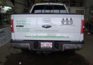 Vehicle Lettering
